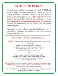 Proposed Changes To Title 6 (Child Support Act)