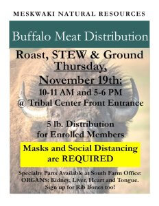 MNR Buffalo Meat Distribution @ Meskwaki Tribal Center Front Entrance | Tama | Iowa | United States